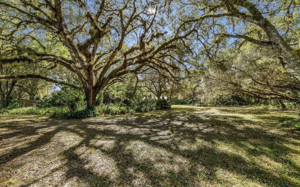 5301 County Rd 78, Denaud - Home For Sale 913323144