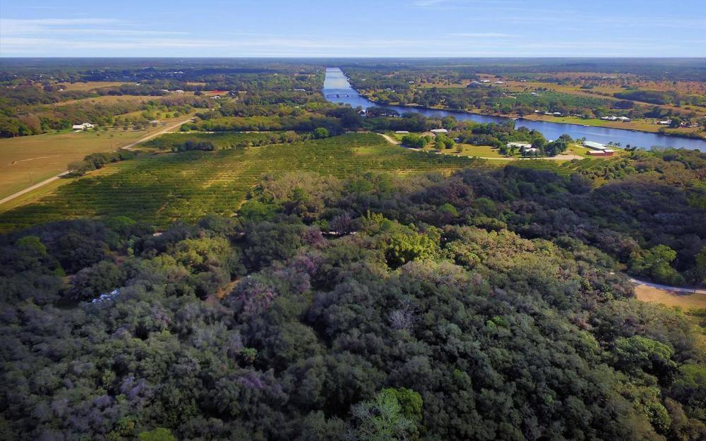 5301 County Rd 78, Denaud - Home For Sale 1167668167