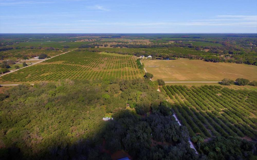 5301 County Rd 78, Denaud - Home For Sale 2038472412