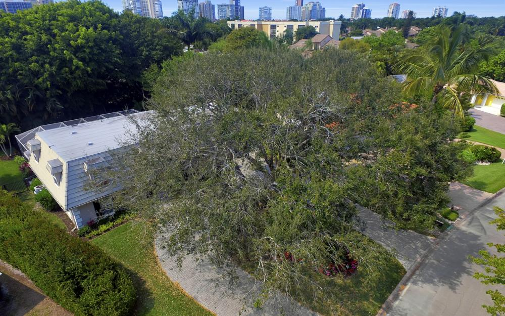 719 Willowhead Dr, Naples - Home For Sale 1684764467