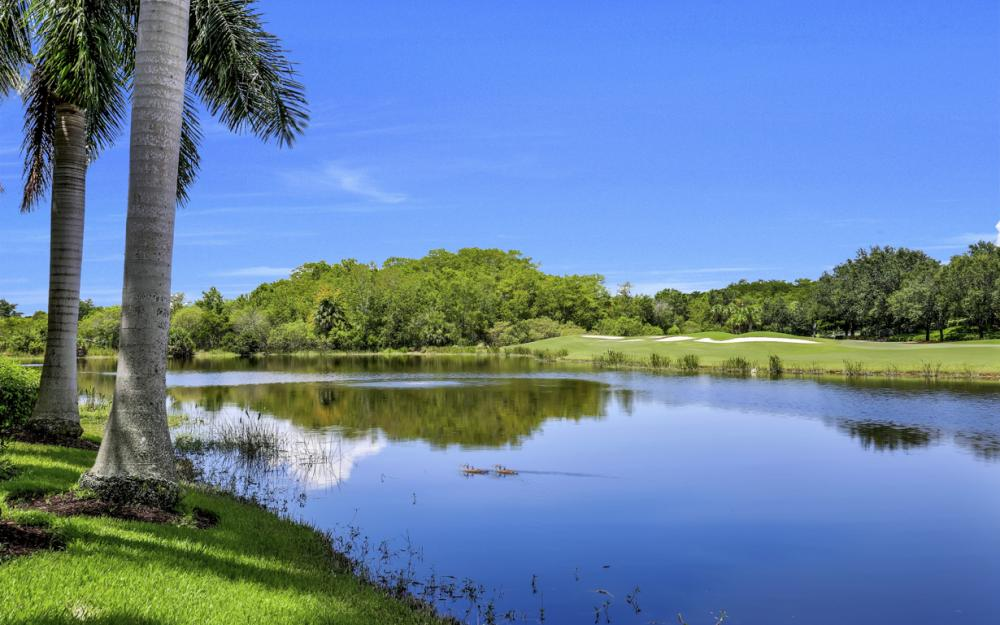 23048 Shady Knoll Dr, Bonita Springs - Home For Sale 1600833941