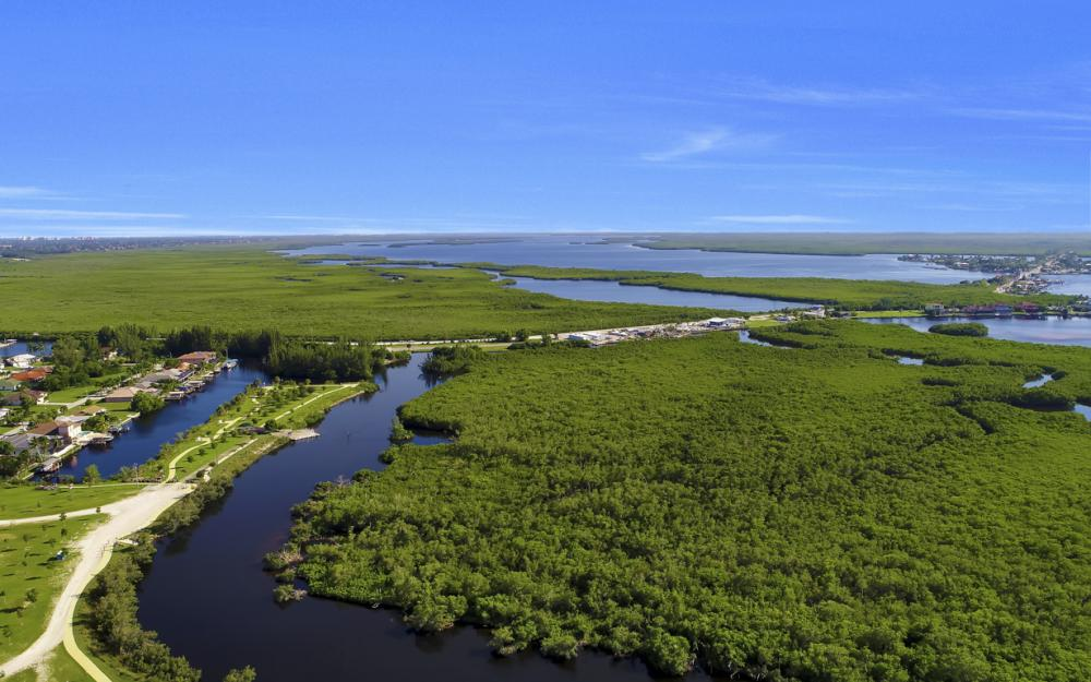 214 Old Burnt Store Rd S, Cape Coral - Lot For Sale  1696626825