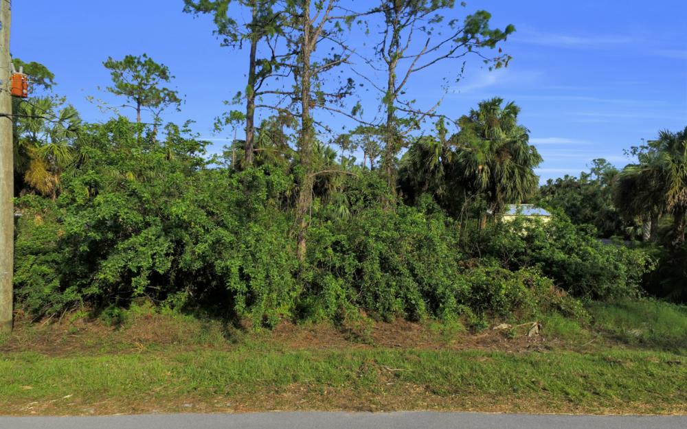 140 21st St NW, Naples - Lot For Sale 48690730