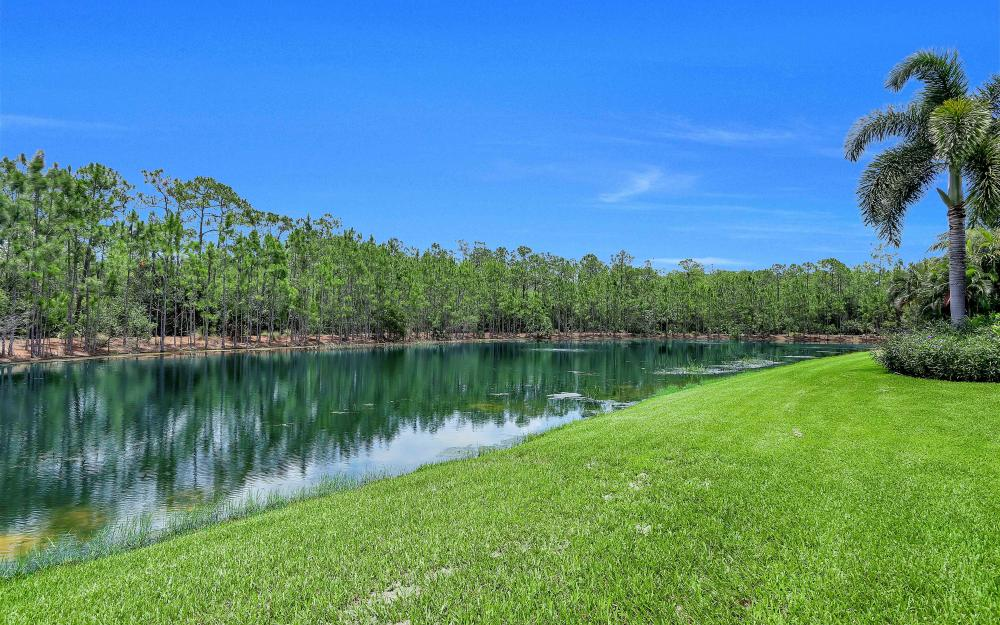 9421 Lakebend Preserve Ct, Bonita Springs - Home For Sale 724496240