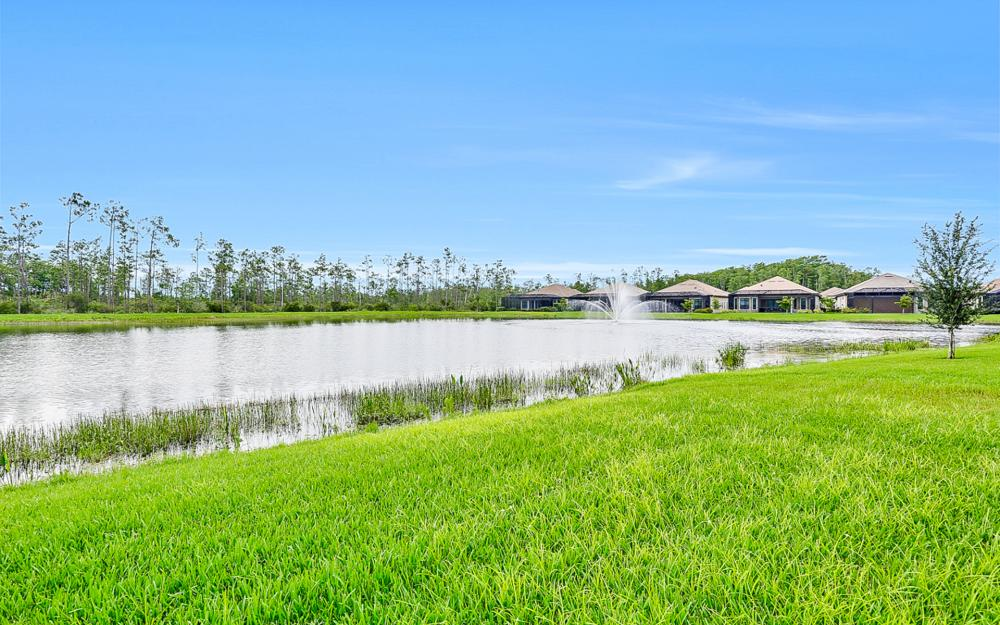 11313 Paseo Dr, Fort Myers - Home For Sale 2017639686