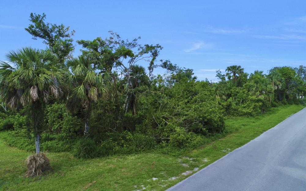 2023 Sheffield Ave, Marco Island - Lot For Sale 245836211