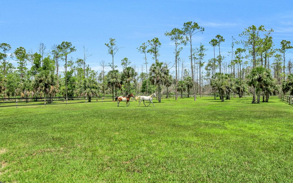 2900 Newman Dr, Naples - Horse Farm For Sale 1456898855