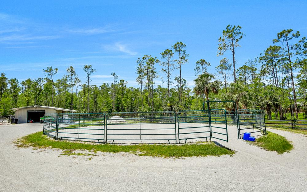 2900 Newman Dr, Naples - Horse Farm For Sale 457150165