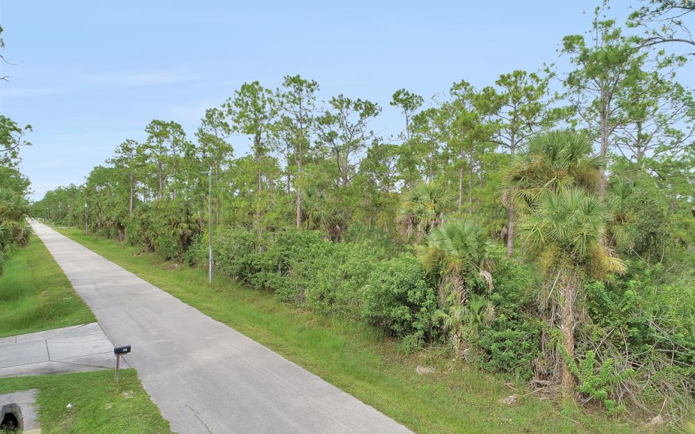 9th St SW, Naples - Lot For Sale 1717425677