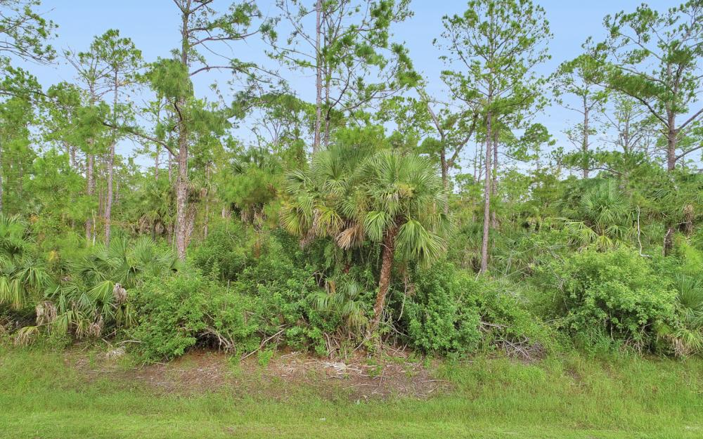9th St SW, Naples - Lot For Sale 2056830440