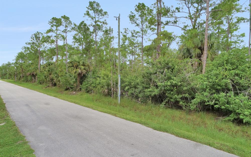 9th St SW, Naples - Lot For Sale 1176851168