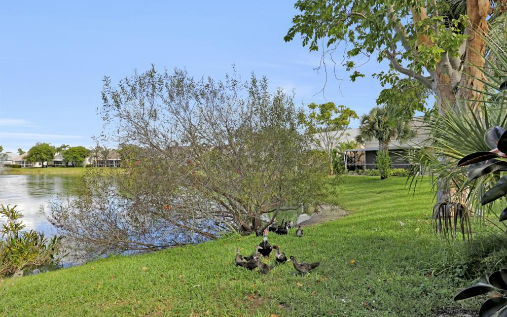 15267 Cricket Ln, Fort Myers - Home For Sale 1267058541