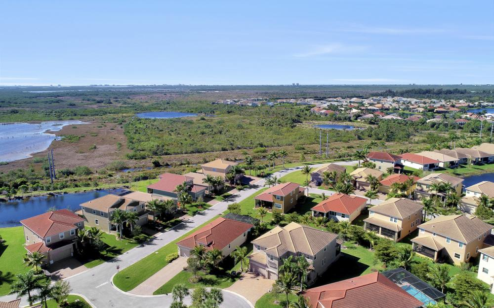 17010 Banyan Vine Ct, Fort Myers - Home For Sale 74021460