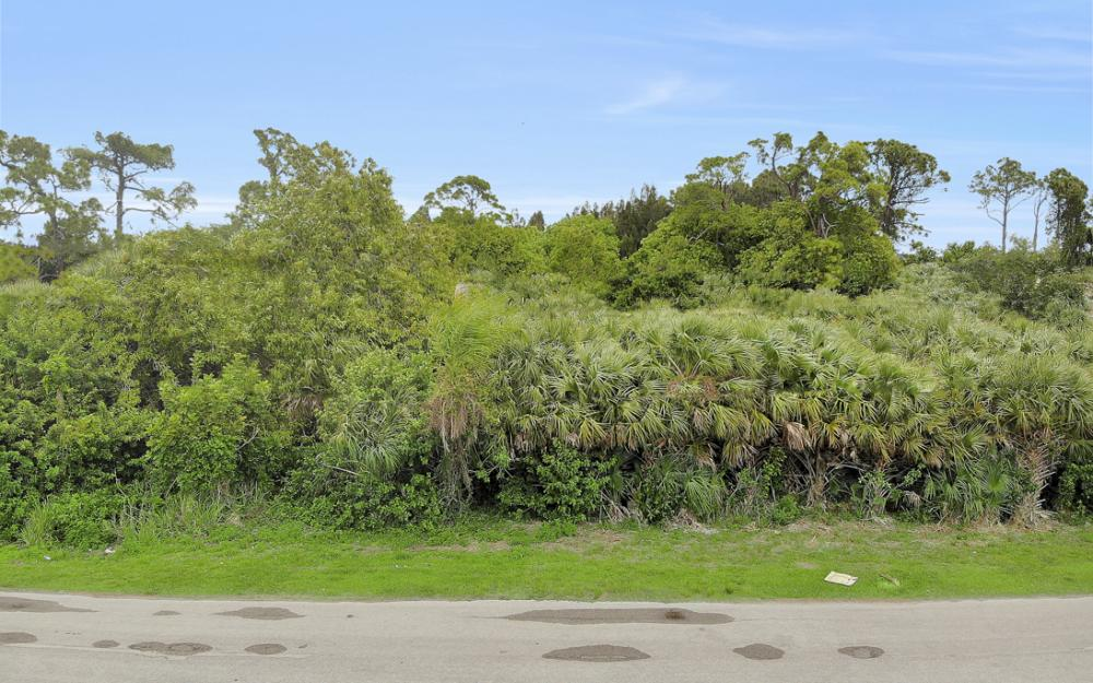 274 Professional PL, Fort Myers - Lot For Sale 874853928