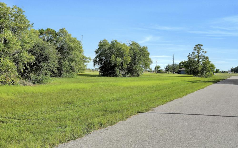 1635 NW Juanita Pl, Cape Coral - Lot For Sale 778770260