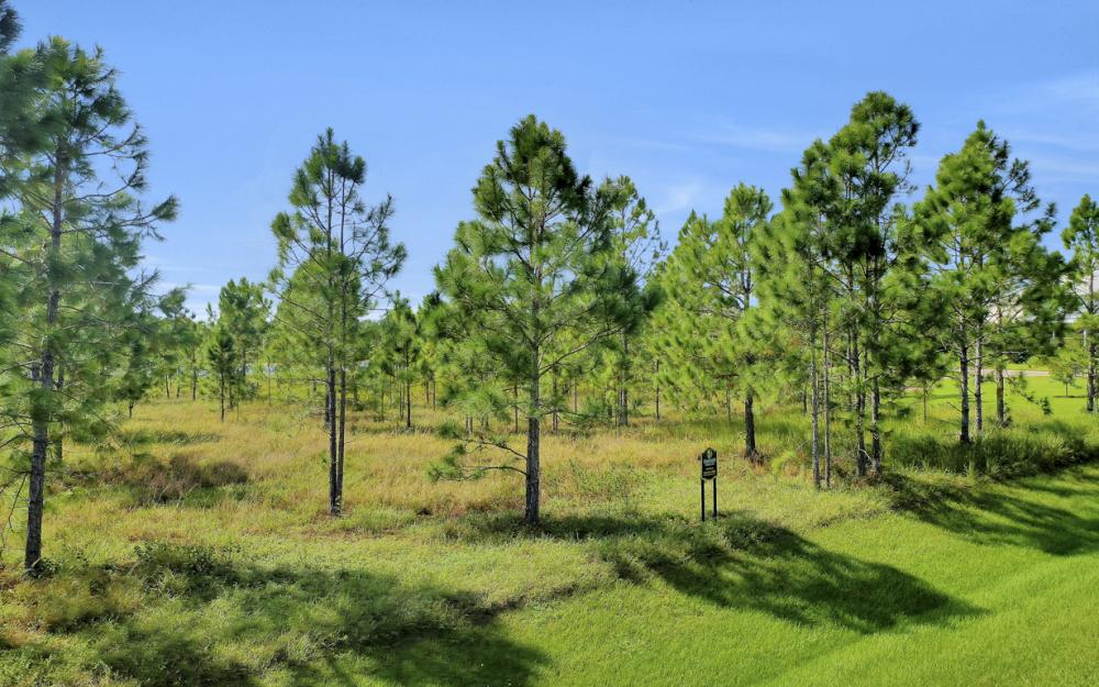20500 Slalom Course Ct, Estero - Lot For Sale 1915930662