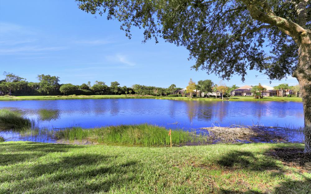 17827 Modena Rd, Miromar Lakes - Home For Sale 45535839