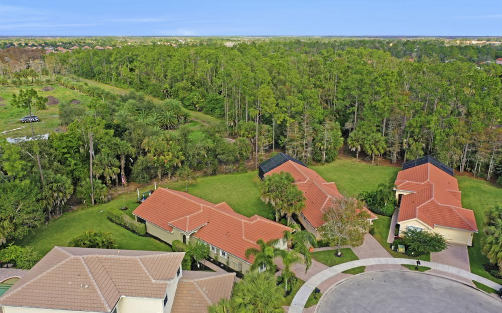 1309 Triandra Ln, Naples - Home For Sale 671788260